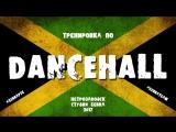Тренировка по Dancehall (студия Zebra, г. Петрозаводск)