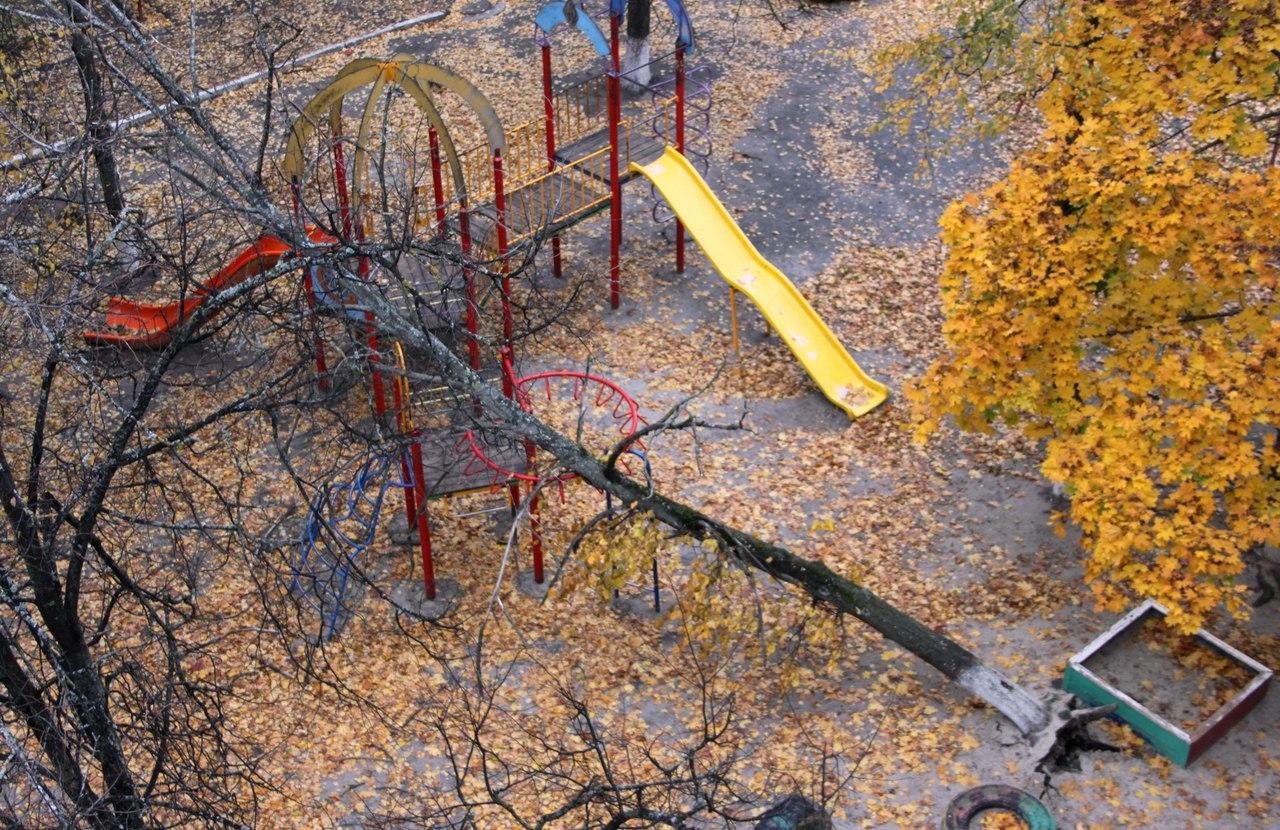 Появились фото из Брянска, где дерево рухнуло на детскую площадку