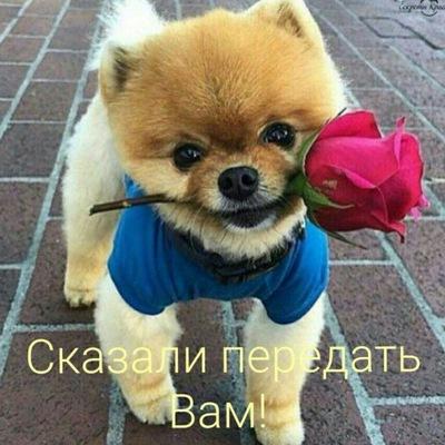 Юрий Бурняш