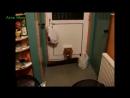 Смешное видео про животных до слез смотреть!