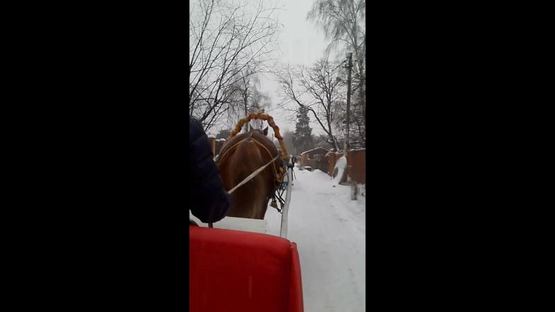 А снег по лесу частому под полозом скрипит, лошадка мохноногая торопится бежит:)