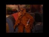 Alf Quote Season 3  Episode 6_Рано