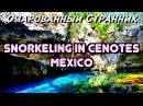 ОС 113 / Три Подводных Пещеры, Полуостров Юкатан, Мексика / Three Cenotes - Azul, Eden, Cristalino