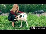 Instagram post by Ольга Орлова  Sep 29, 2017 at 557am UTC