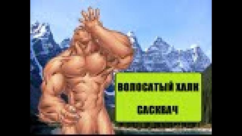 Волосатый Халк. Сасквач (Комикс-Гайд 33)