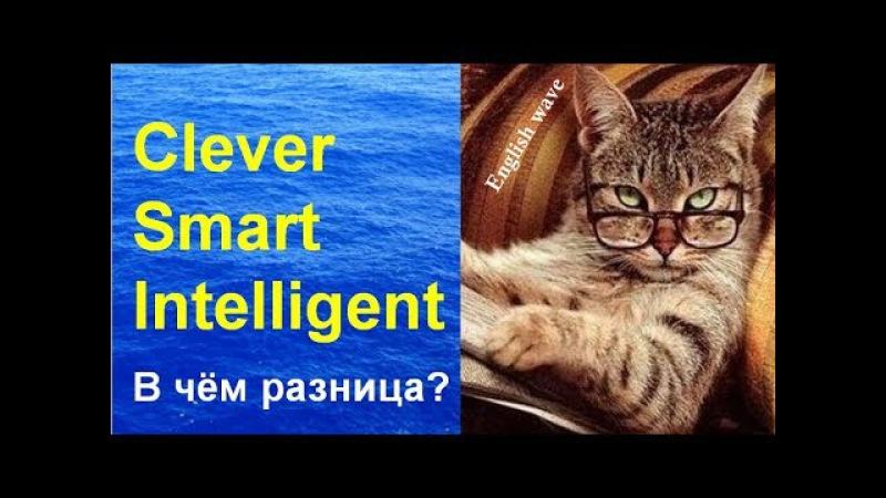 Разница между Clever, Smart, Intelligent. Лексика Английского языка Умный по-английски