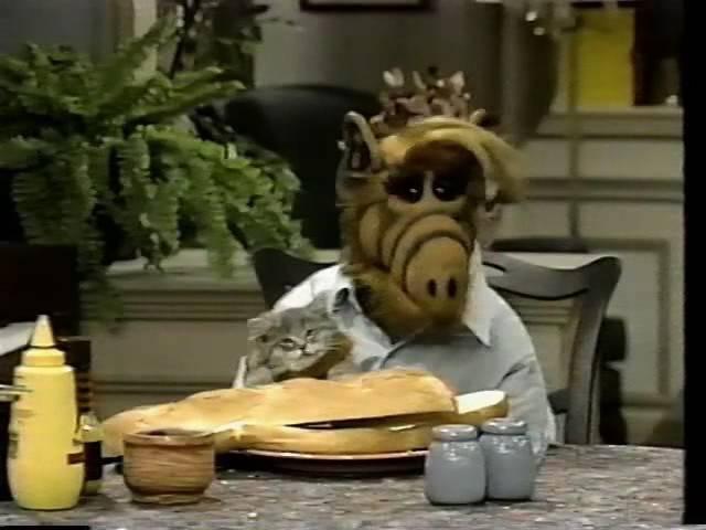 Alf Questions Eating Cats
