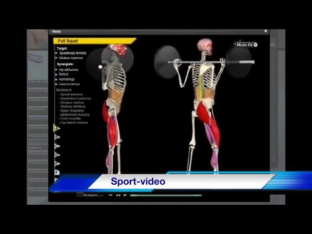Биомеханика Ягодичных Мышц. Анатомия и 3D анализ упражнений