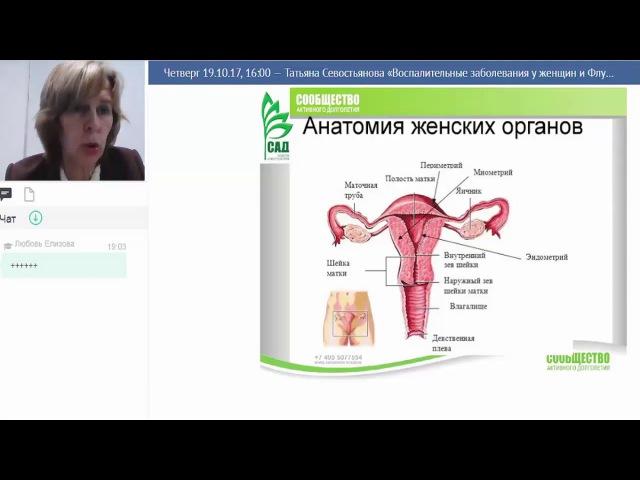 ACLON Флуревиты при воспалительных женских заболеваниях Севостьянова Т И 19 10 2017
