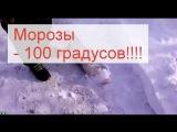Суровые морозы не только в Казахстане и Астане Замерзают животные, птици и рыбы на лету 100 градусов