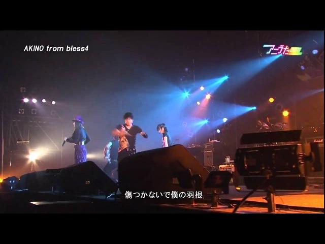 [LIVE] アニうた KITAKYUSHU 2011 [AKINO from bless4]