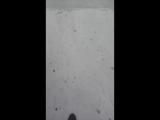 катим скутер