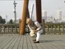 Hung Gar Tiger Crane - by 90 year old master