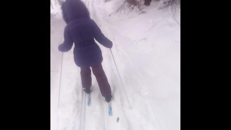 Василиса-лыжница