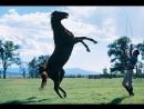 Заклинатель лошадей(Заклинатель,The Horse Whisperer)(1998)