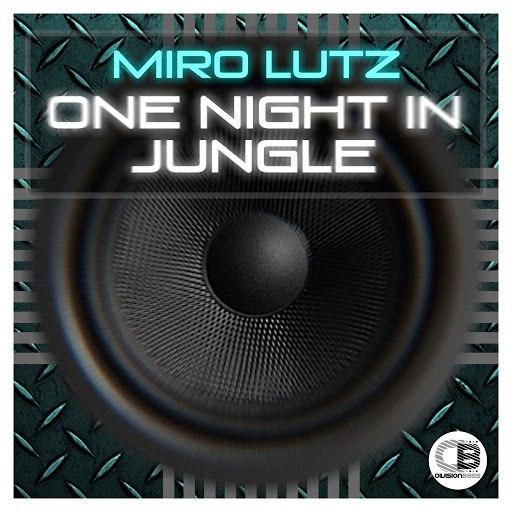 Miro альбом One Night In Jungle
