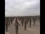 «SDF» при поддержке США сформировали пехотную бригаду на границе с Турцией