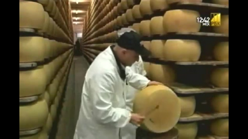 Сыр. Полезно или вредно...