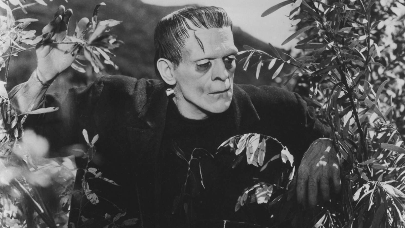 the impact of acceptance in frankenstein Creation and responsibility in science: some lessons from the -- victor frankenstein , understanding, and acceptance may lead to the fruitful integration.