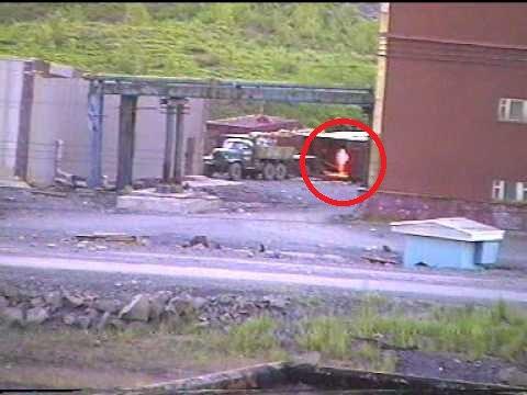 СЕНСАЦИЯ! Инопланетянин в Норильске    В Норильске часто наблюдают нео