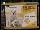 В Большереченском зоопарке заботятся о пожилой медведице