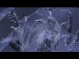 OMAR AKRAM - Passage into midnight