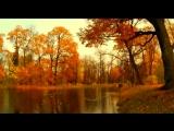 Ну вот и осень.  Белые птицы. (Спас на Сенной)  о.Анатолий(Першин)