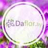 Доставка цветов в Минске ::: daflor.by