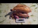 Цесарки породы Кремовая . Результат разведения: вес тушки.