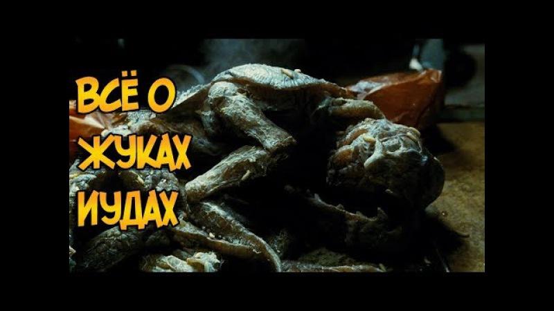 Жуки-Иуды из фильма ужасов Мутанты