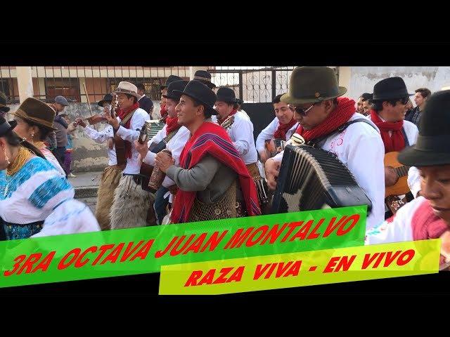 TERCERA OCTAVA RAZA VIVA EN VIVO JUAN MONTALVO 2017 🎻