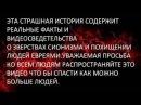 ПОХИЩЕНИЯ И УБИЙСТВА ЛЮДЕЙ РОССИИ СИОНИЗМ САТАНИЗМ ФАШИЗМ