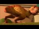 Динозавр из мультика В гости к Робинсонам