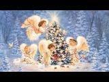 Рок-группа Переучёт Рождество (Home video)