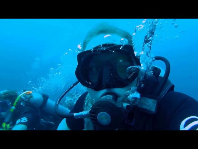 Diving, Koh Tao, Thailand - February 2017