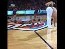Акробатические трюки с собачкой