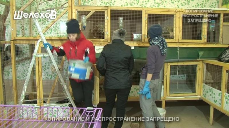 Необычный домашний зоопарк семьи Поповых