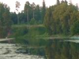 Валерий Агафонов Дремлют плакучие