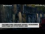 «Приключениям Паддингтона-2» не дали конкурировать с российским кино