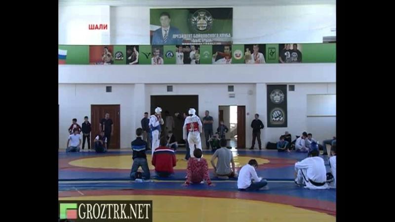 В Шали состоялся чемпионат республики по тхэквондо