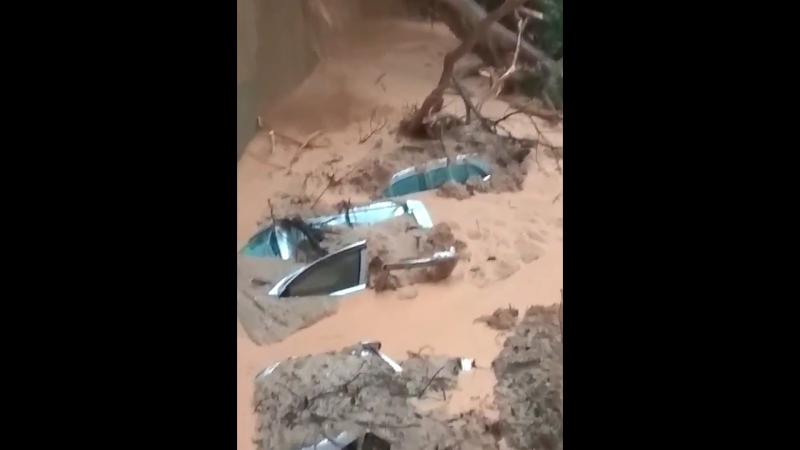1228 Малайзия. Дождь. Сель. Остров Пинанг. 15 сентября 2017.