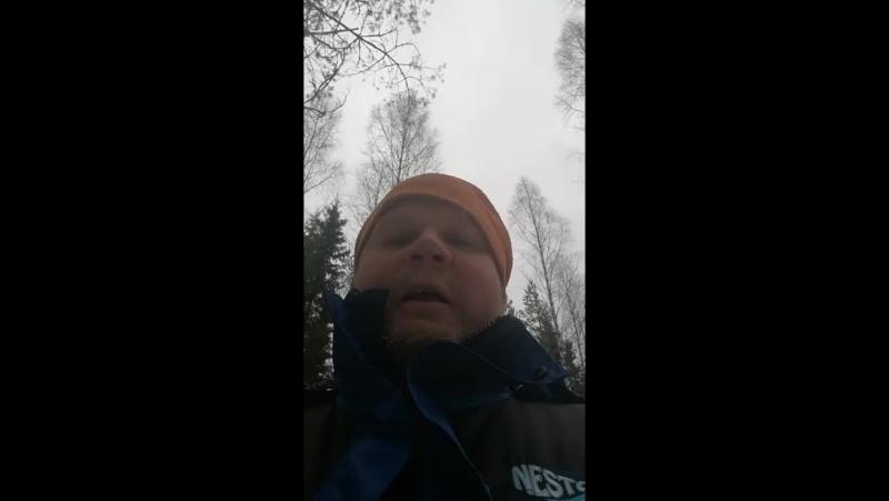 горячий финский парень в лесу
