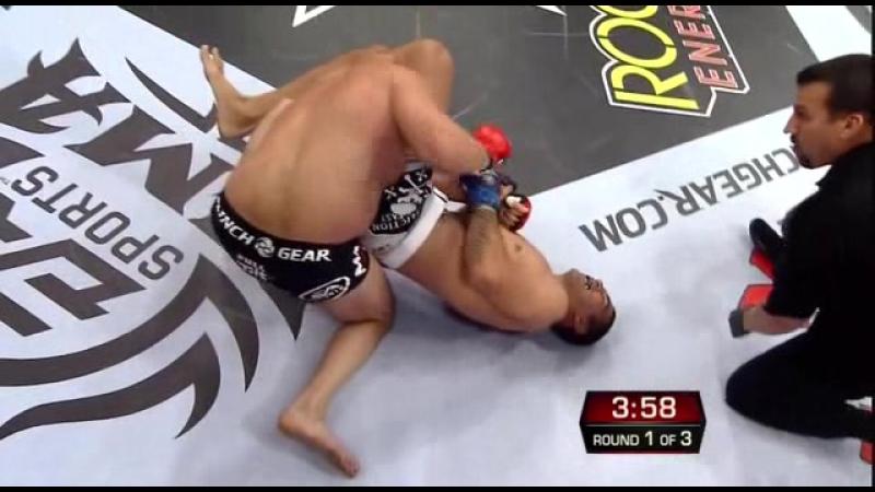 35 Фёдор Емельяненко - Fabricio Werdum, Strikeforce - Fedor vs Werdum, 26.06.2010