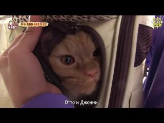 [FanSub GDn Ent]  TV Animal Farm ep 821 (Winner) рус саб