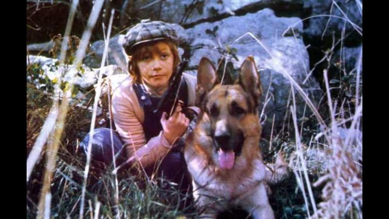 Х Ф Белый Клык и большой ребёнок 1977г