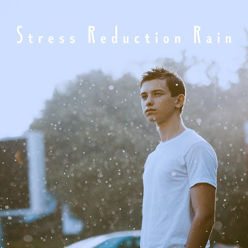 Rain альбом Stress Reduction Rain