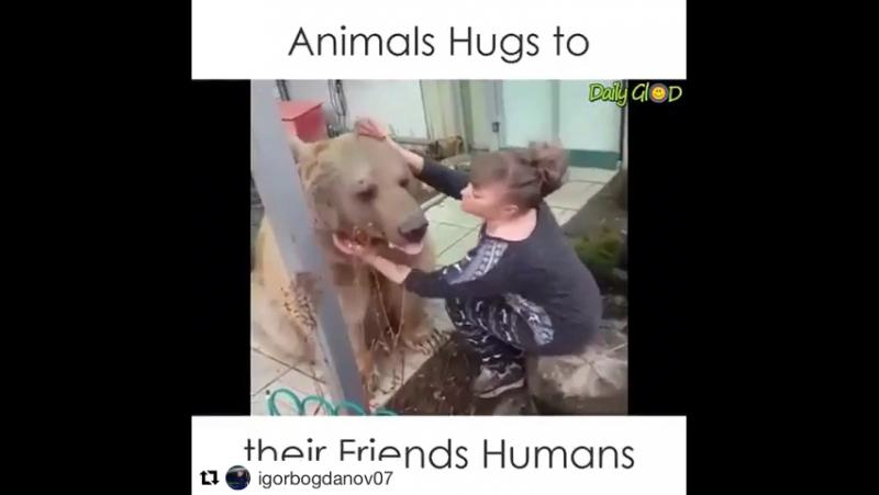 Мило и трогательно. Люди, животные, заериптицы