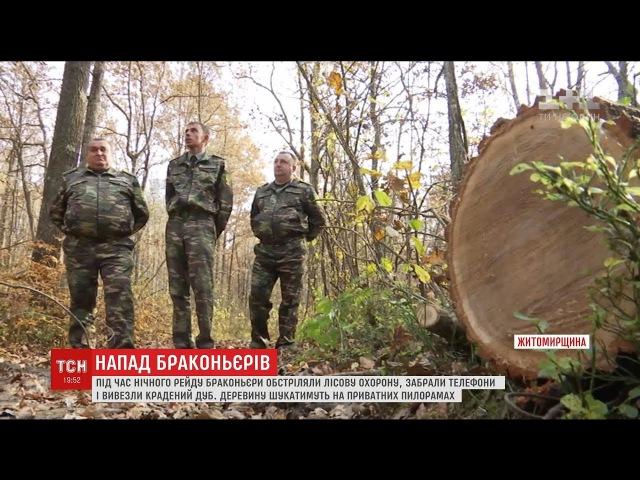 Крадіжка з стріляниною браконьєри обікрали лісову охорону на Житомирщині