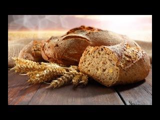 ЗАГОВОР против человечества - хлеб, который УБИВАЕТ..