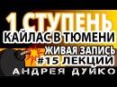 ⚜ 15 Андрей Дуйко 1 ступень ШколаКайлас в Тюмени ⚜ Эзотерика бесплатно